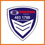 SEO para Sekron Digital